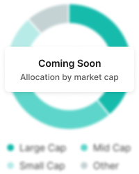 allocation by market cap